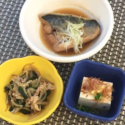 020927鯖味噌煮ぶろぐ.jpg