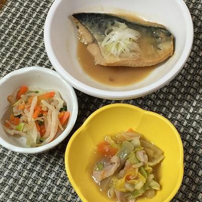310414サバの味噌煮ぶろぐ.jpg